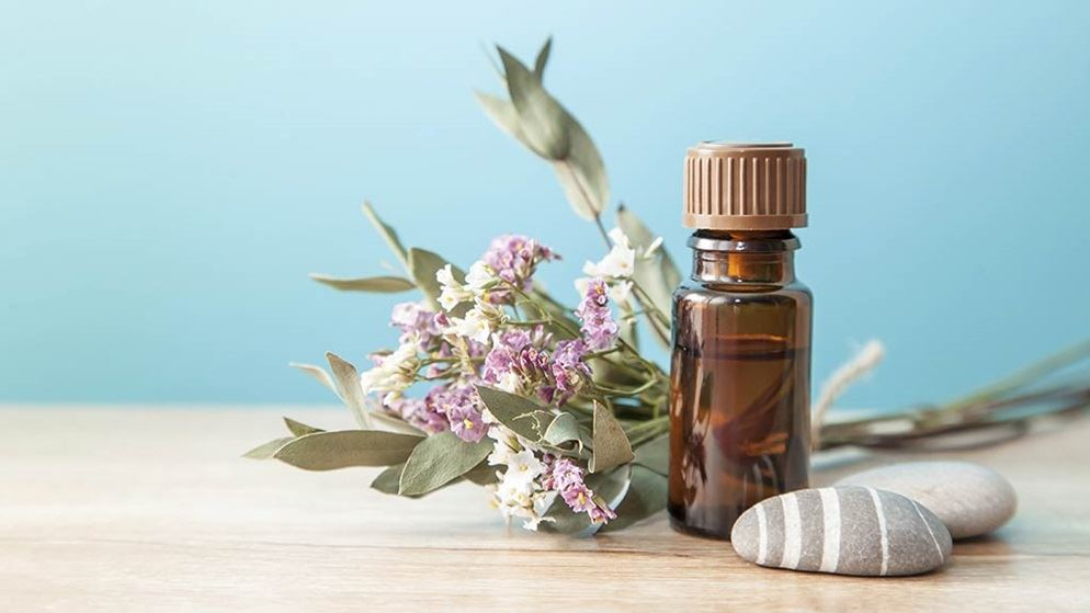 Organic cosmetics ns lead