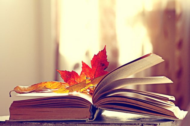 book pages yellow leaves of autumn concept