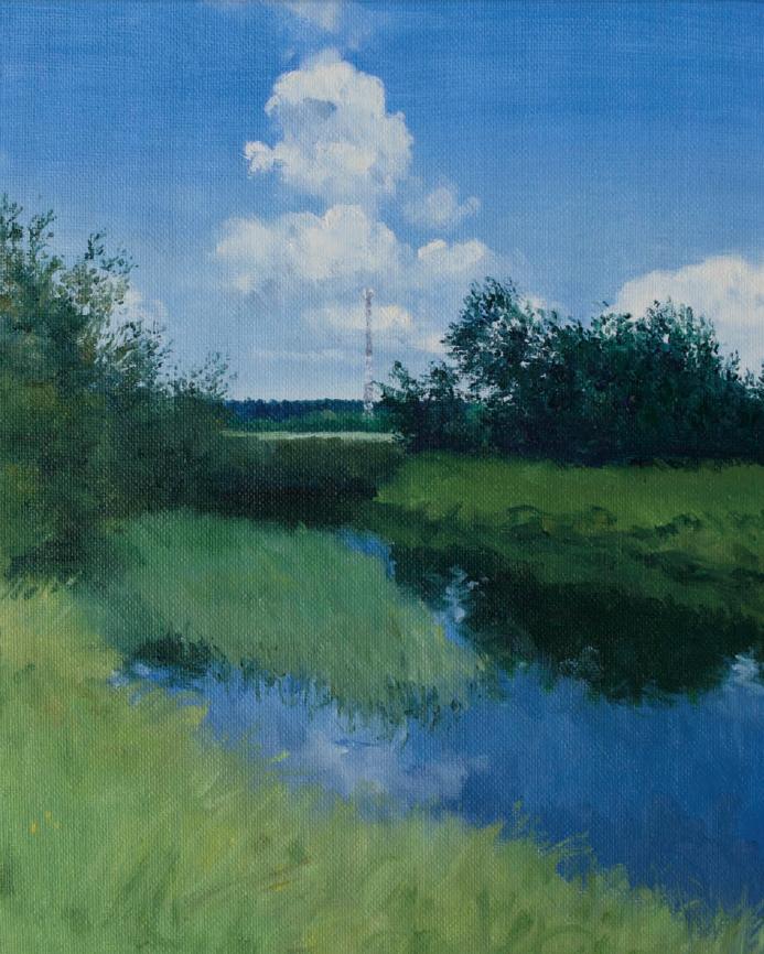 Пейзаж с ретранслятором 2018 (3)